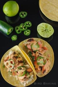 Salmon Tacos with Cilantro-Lime Slaw recipe